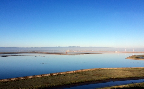 Vista towards the North