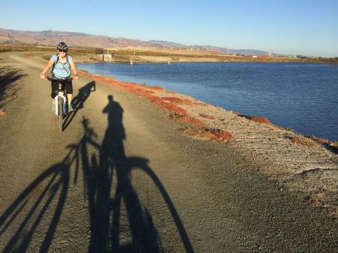 Mallard Slough Trail