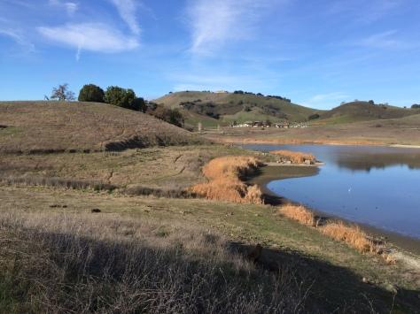 Calero Reservoir